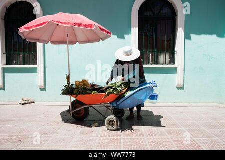 Bolivia, Uyuni, fruit stall, woman selling pineapples - Stock Photo