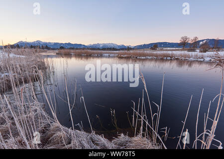 Sunrise on Ach River, Uffing am Staffelsee, Ammergau Alps in the background, near Murnau, Upper Bavaria, Bavaria, Germany - Stock Photo