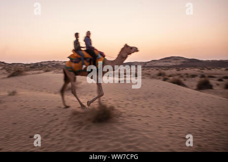 A female tourist on a camel trek in the Thar desert with her camel driver at dusk, Rajasthan, India. - Stock Photo