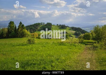 Beautiful spring mountain landscape. Beautifully lit green hill in Poland.