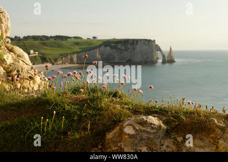 View to the rock needle L' Aiguille and Falaise d'Aval with Porte d'Aval in the evening light, Seine-Maritime, Etretat, Normandy, France - Stock Photo