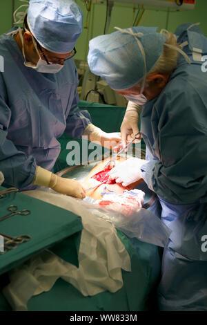 birth, Caesarean section, doctor, operations, hospital, Czechia - Stock Photo