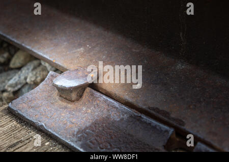 Closeup of a rusty, old railroad spike on abandoned railroad tracks in New Hampshire - Stock Photo