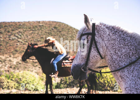 horse and animals lifestyle in friendship with humans and persons. outdoor leisure activity on the mountains - Stock Photo