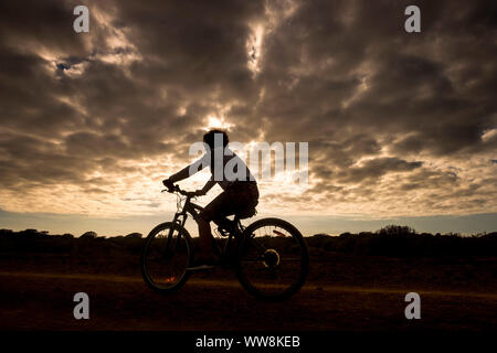 mountain biker woman in action with golden beautiful sunset in background, silhouette of athlete going on bike following the road and enjoying the summer time - Stock Photo