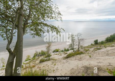 Steep coast at sunrise, Langenberg, Bansin, Usedom, Baltic Sea, Western Pomerania, Germany - Stock Photo