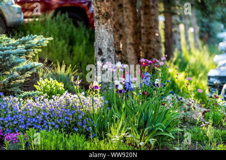 Snowmass Village in Aspen, Colorado parking lot and colorful summer landscaped flowers - Stock Photo