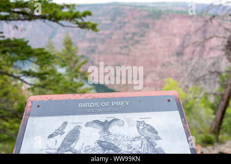 Dutch John, USA - July 24, 2019: View from Canyon Rim overlook in Flaming Gorge Utah National Park of Green River with birds of prey sign - Stock Photo