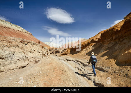 Tourist with backpack and camera walking in dusty canyon on surreal red mountains against blue sky in the desert - Stock Photo