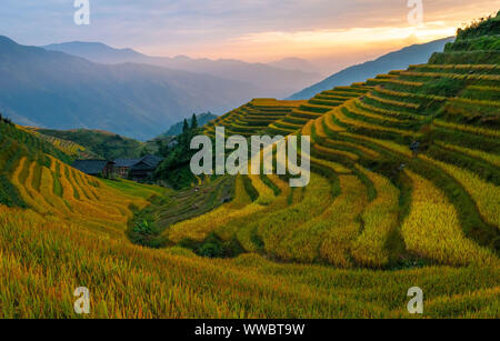 Sunset in the rice terraces of Ping An village, Longheng county, Guangxi Province, China. - Stock Photo