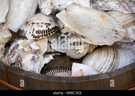 Clam, oyster, and other shells sit in a wooden bucket in the Ameyoko (Ameyayokocho) outdoor market near Ueno Station - Stock Photo