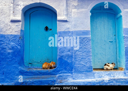 A view of the distinctive blue architecture of Chefchaouen in northwest Morocco. - Stock Photo