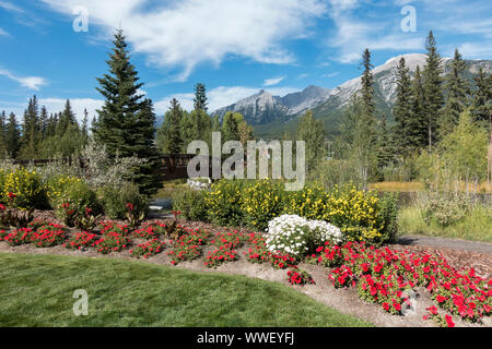 Garden Flower Bed in Green Urban Park and distant Rocky Mountains Landscape at Spring Creek Alpine Village, City of Canmore Alberta Canada - Stock Photo