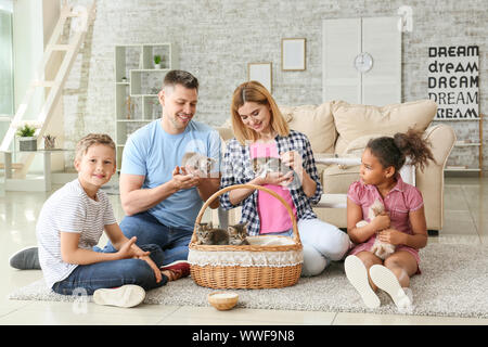 Family with cute funny kittens at home - Stock Photo