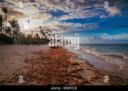 Landscape of paradise tropical island beach, sunset shot against the sun. Amazing sunset light on Punta Cana beach with lounge chairs, umbrellas and p - Stock Photo