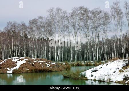 Hohes Venn-Eifel Nature Park - Stock Photo