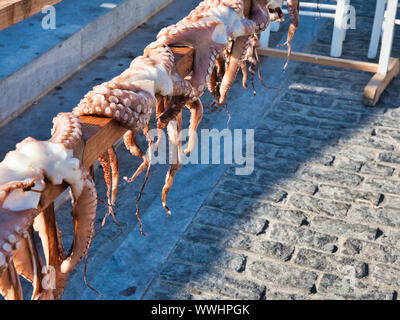 From above sea animals with tentacles hanging on wooden railing on marketplace in old port of Naoussa Greece on sunny day - Stock Photo
