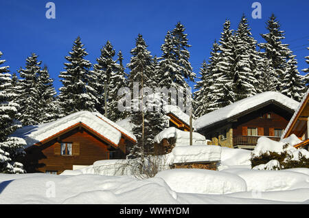 Deep snow-covered log cabins at the edge of the forest - Stock Photo