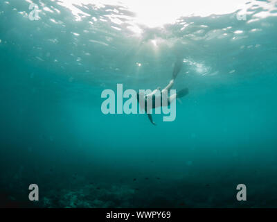 A young woman ascends from a free dive against the sun - Stock Photo