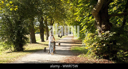 park at castle Burgau, Dueren, North Rhine-Westphalia, Germany, Europe - Stock Photo