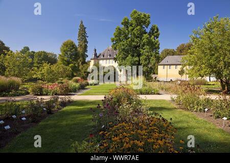 park of castle Dyck, Juechen, Lower Rhine, North Rhine-Westphalia, Germany, Europe - Stock Photo