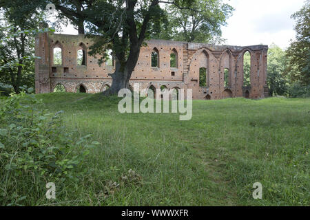 The monastery ruin in Boitzenburg, Uckermark - Stock Photo