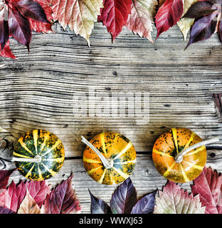 Concept: Thanksgiving. Frame of autumn bright leaves and decorative pumpkins. Free space for text. T - Stock Photo