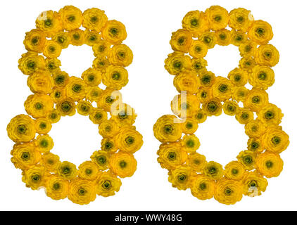 Arabic numeral 88, eighty eight, from yellow flowers of buttercup, isolated on white background - Stock Photo