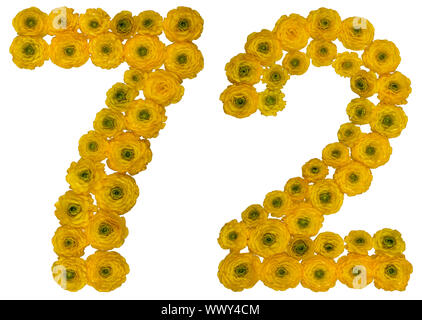 Arabic numeral 72, seventy two, from yellow flowers of buttercup, isolated on white background - Stock Photo