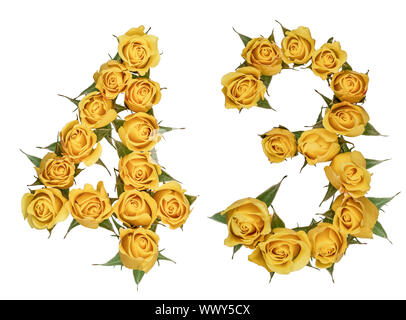 Arabic numeral 43, forty three, from yellow flowers of rose, isolated on white background - Stock Photo