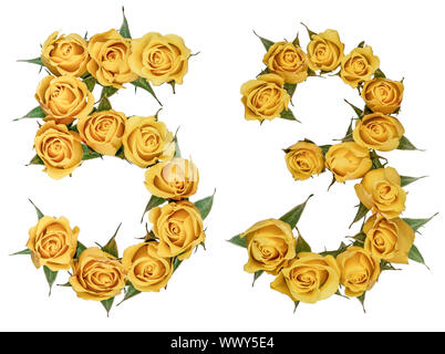 Arabic numeral 53, fifty three, from yellow flowers of rose, isolated on white background - Stock Photo