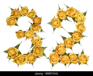 Arabic numeral 32, thirty two, from yellow flowers of rose, isolated on white background - Stock Photo