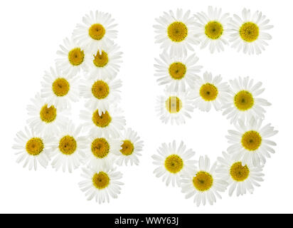 Arabic numeral 45, forty five, from white flowers of chamomile, isolated on white background - Stock Photo