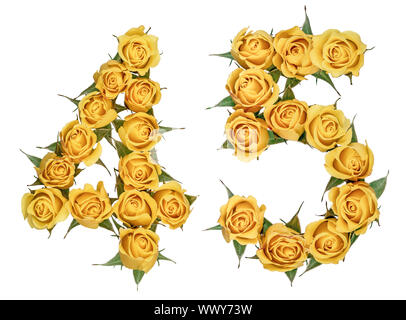 Arabic numeral 45, forty five, from yellow flowers of rose, isolated on white background - Stock Photo