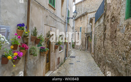 Travel Beautiful street in Valldemossa with traditional flower decoration, famous old mediterranean village of Majorca. Balearic - Stock Photo