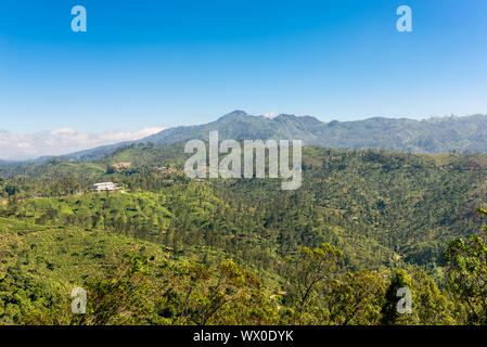 View direction Badulla to the 2,035 metres high Namunukula mountain - Stock Photo