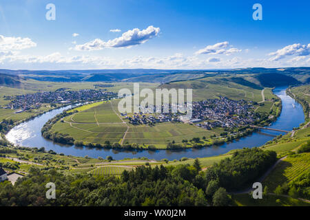 The Moselle at Trittenheim, Moselle Valley, Rhineland-Palatinate, Germany, Europe - Stock Photo