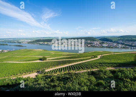 View over the River Rhine from the Niederwalddenkmal monument, UNESCO World Heritage Site, Middle Rhine valley, Germany, Europe - Stock Photo