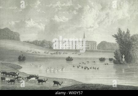 "'Petworth Park', 1835. Grade I listed country house, rebuilt in 1688 by Charles Seymour and known for an art collection made by George Wyndham. Petworth Park, has the largest herd of fallow deer in England and was landscaped by Capability Brown. Steel engraving by William Westall after Thomas Henwood. From ""The History, Antiquities, and Topography of the County of Sussex, Volume the Second"", by Thomas Walker Horsfield, F.S.A. [Baxter, Sussex Press, Lewes; Messrs. Nichols and Son, London, (1835)] - Stock Photo"