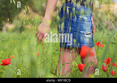 Woman enjoying a walk in a poppy field under the summer sun. - Stock Photo