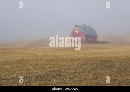 A red barn shrouded by fog stands on the palouse reagion of eastern Washington. - Stock Photo
