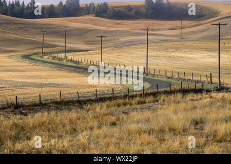 A winding country road cutting through the landscape of the palouse region in eastern Washington.