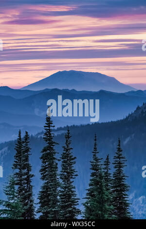 Mount St. Helens in last light of day, viewed from the Pacific Crest Trail in the Goat Rocks Wilderness, Gifford Pinchot National Forest, Washington S - Stock Photo