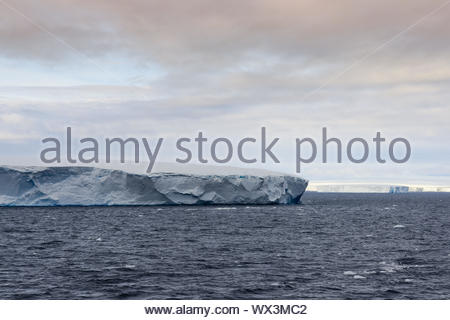 Huge Tabular Icebergs floating in Bransfield Strait near the northern tip of the Antarctic Peninsula, Antarctica - Stock Photo