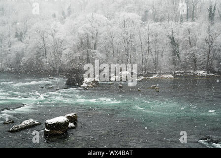 winter forest and river landscape with heavy snowfall - Stock Photo