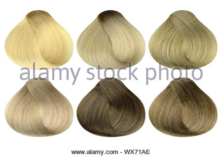 Set of locks of six different blonde hair color samples, rounded shape, isolated on white background, clipping path included - Stock Photo