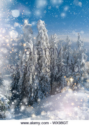 Wnter landscape trees in hoarfrost, Christmas background with some soft highlights, golden stars and snow flakes. - Stock Photo