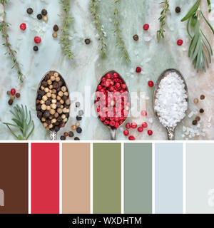 Color matching palette from macro top view of herbs, inclluding rosemary and thyme, and spices, salt and mixed peppercorns in vintage metal spoons on - Stock Photo