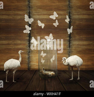 Fantasy artistic composition with a hare in a glass jar, butterflies and two white ostrich - Stock Photo