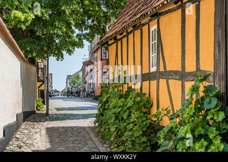 a yellow idyllic half-timbered house with green hollyhocks, at a narrow lane in the historic center of Faaborg, Denmark, July 12, 2019 - Stock Photo